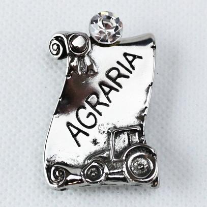 Calamita Magnete Pergamena Laurea in Agraria metallo argentato